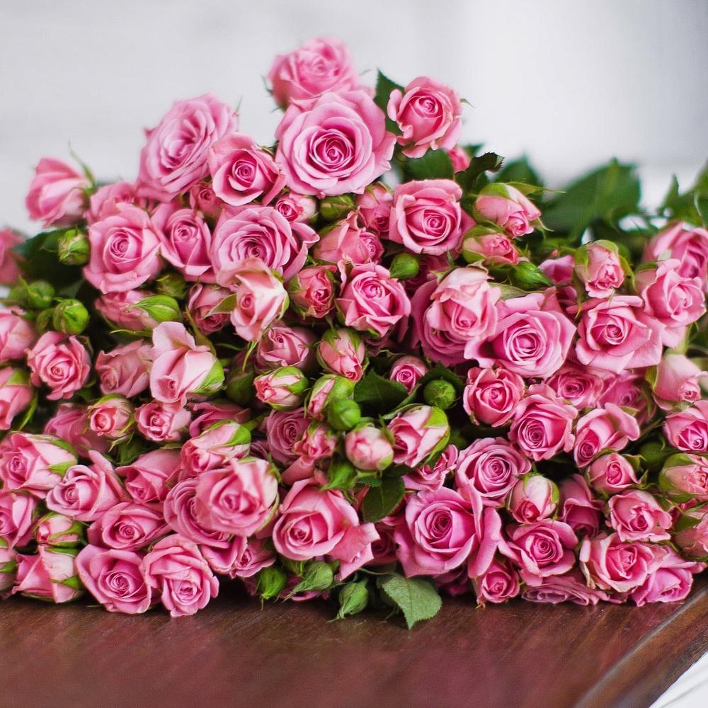маленькие розы открытки ассортименте предприятия