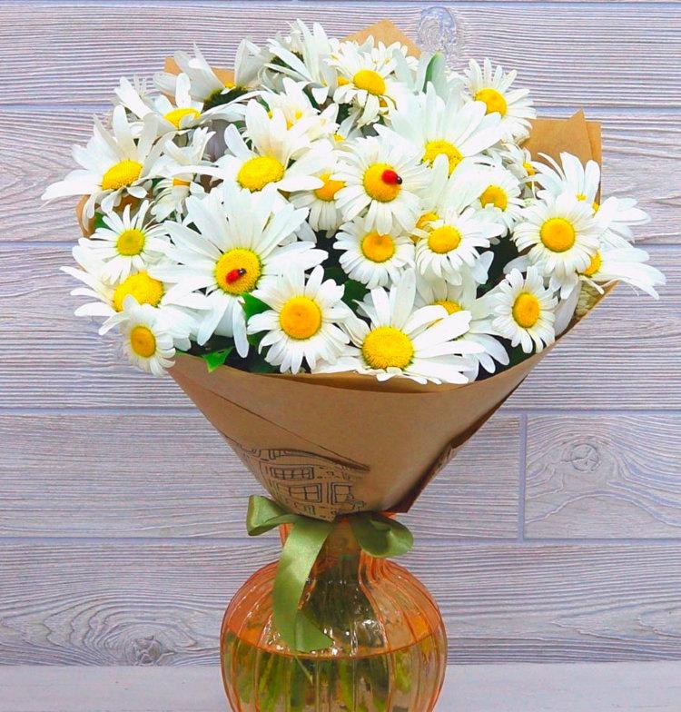 фото цветы красивые букеты ромашки была